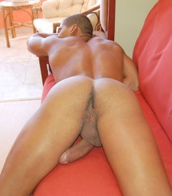 latinboyz galleries 5